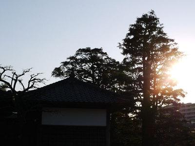 風景【試しパシャパシャ】5