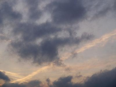 今日の空[2009/01/24]2