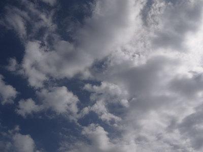 今日の空[2009/03/07]2