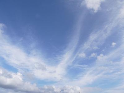 今日の空[2009/06/20]1