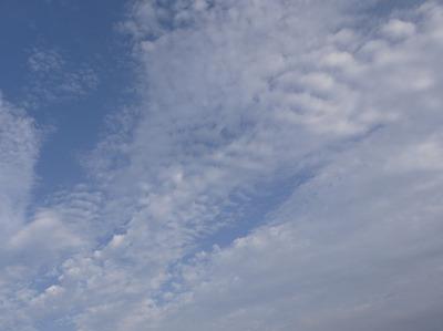 今日の空[2009/07/12]2