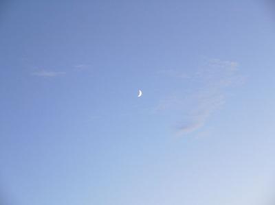 今日の空[2009/07/26]1