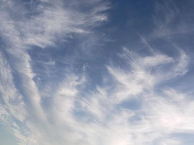 今日の空[2009/08/16]1