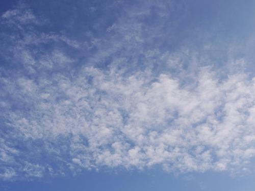 今日の空[2009/11/15]2