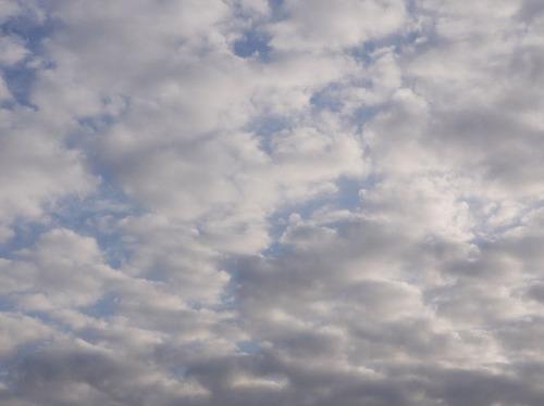 今日の空[2009/12/27]