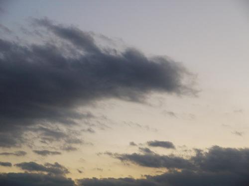 今日の空[2010/01/16]3