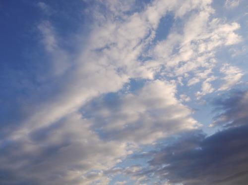 今日の空[2010/01/23]1