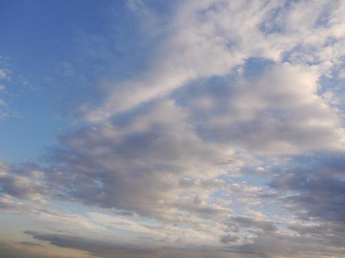 今日の空[2010/01/23]2