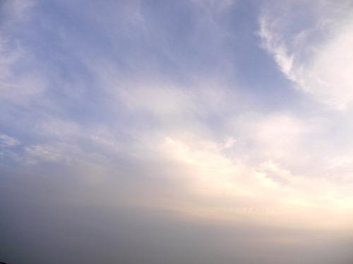 今日の空[2010/01/31]