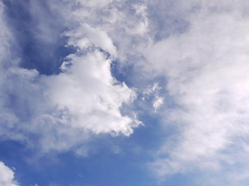 今日の空[2010/02/06]3