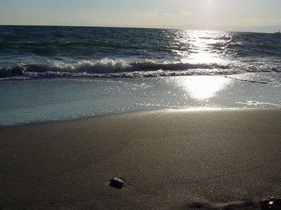 夕方の海1
